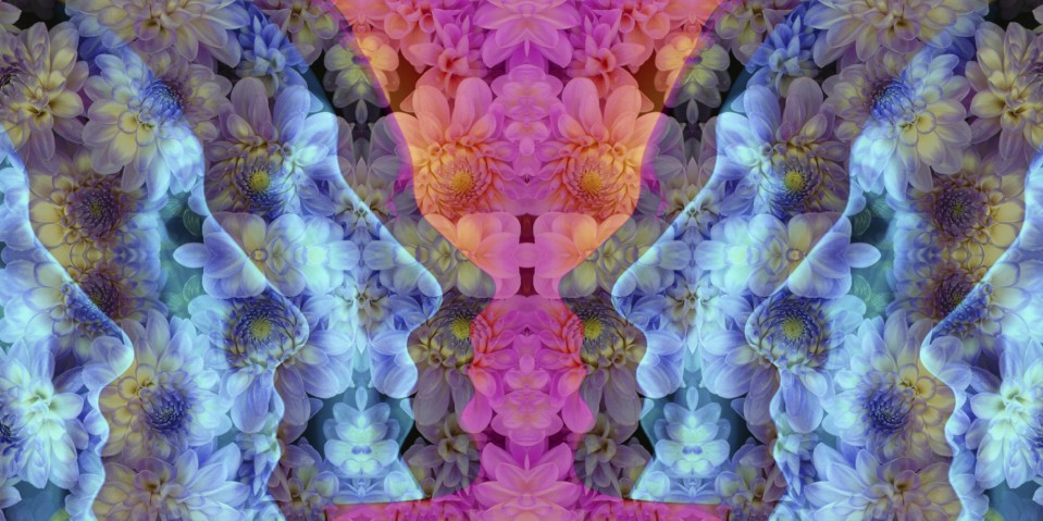 o-LSD-facebook